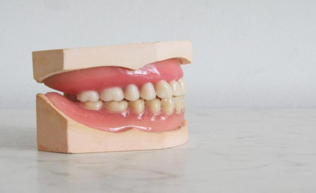 fun dental facts set of teeth